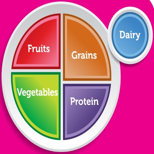 FDA sample plate showing balance between Protien, grains, vegetables, fruits and dairy.